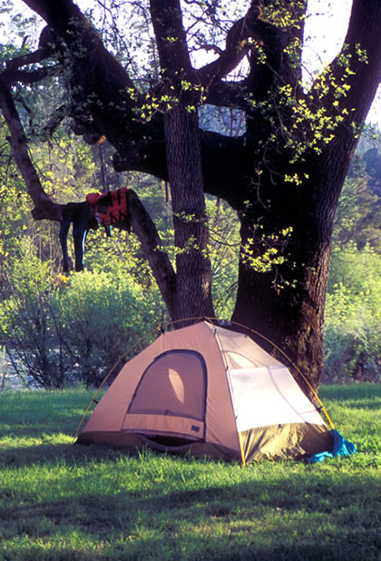 Camping on the Cherry Creek