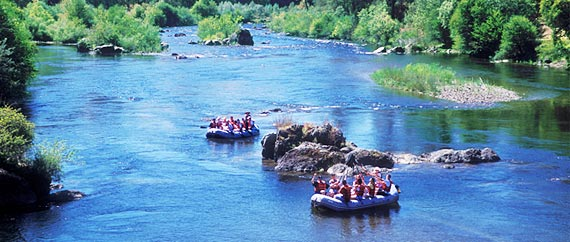Trip Details for the South Fork American River
